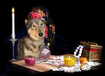 Sierra fortune teller